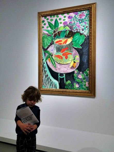 Matisse at the Shchukin Collection, photo John Pollard